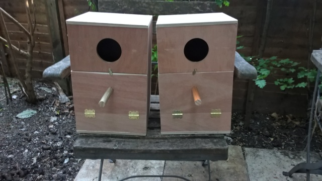 Cockatiel Nest Boxes Bought On Ebay